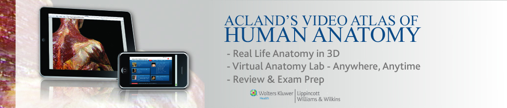 Acland\'s Video Atlas of Human Anatomy − University of Szeged ...